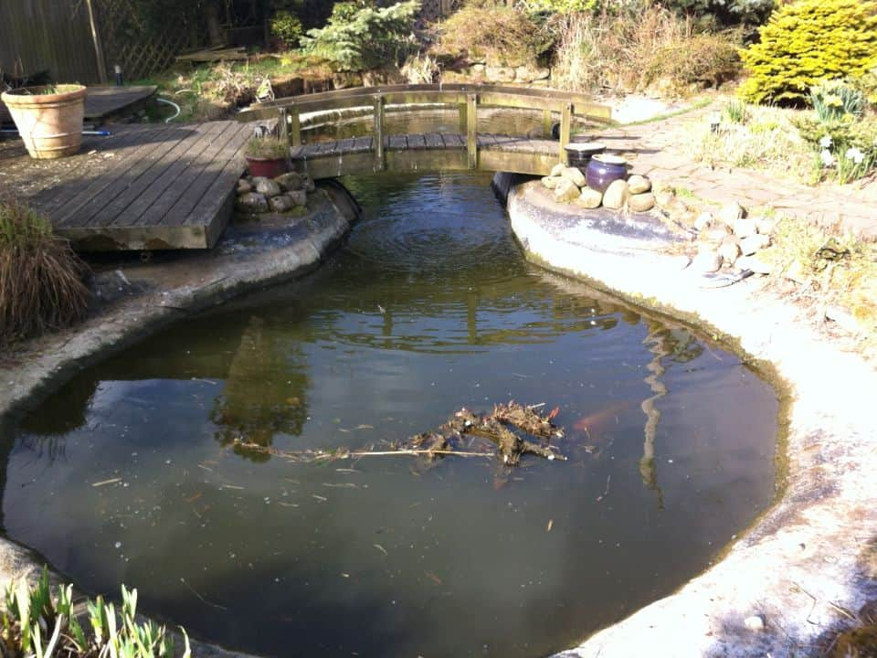 Gallery repairs pond works for Koi pond repair