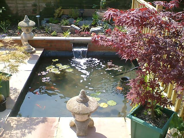 Gallery pond works for Koi pond deck