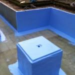 Gel coating the formal pond