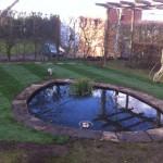 Pond reduction