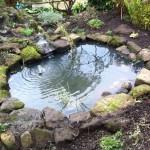 Resculptured wildlife pond