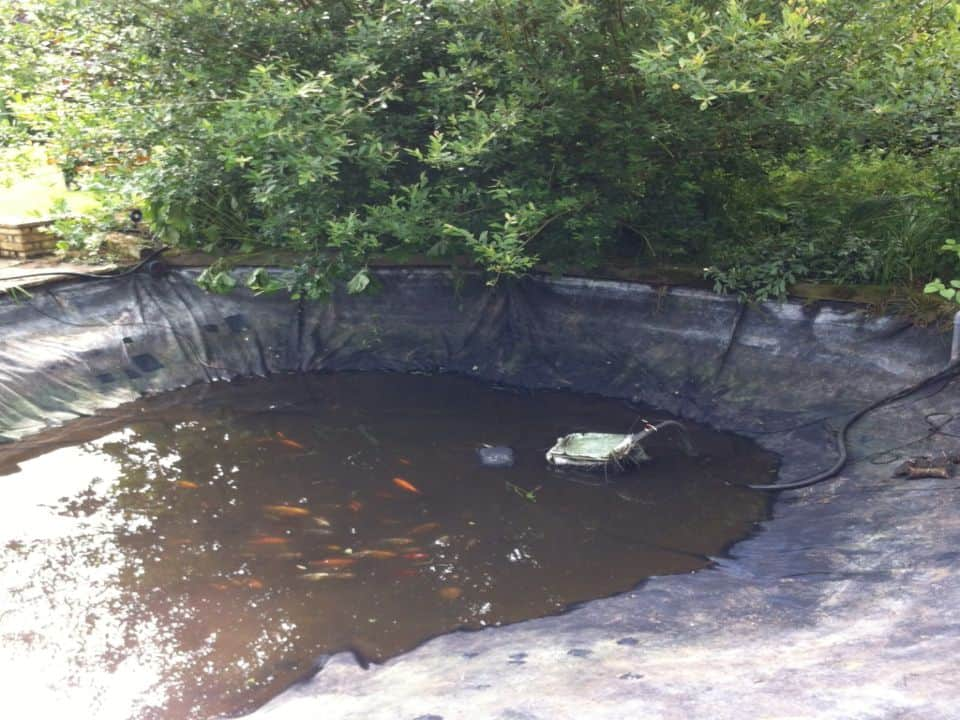 Repaired leaking pond