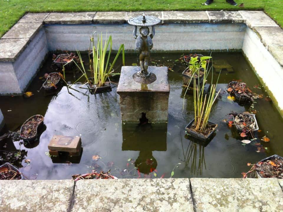 Formal pond before fibreglass re-line
