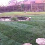 Pond reduction to half size