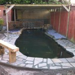 Pond after a revamp by Pond Works
